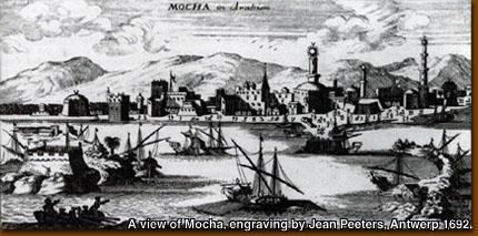 A view of Mocha